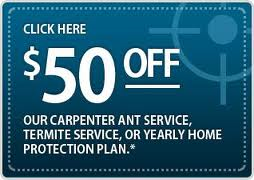 termite coupon veganix new york pest control